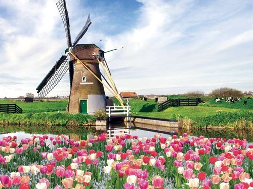 Holland & Belgium -Tulip Time